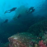Phi-Phi scuba diving daytrip by Namloo Divers Phuket