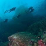 Phi-Phi scuba diving daytrip by Namloo Divers Phuket